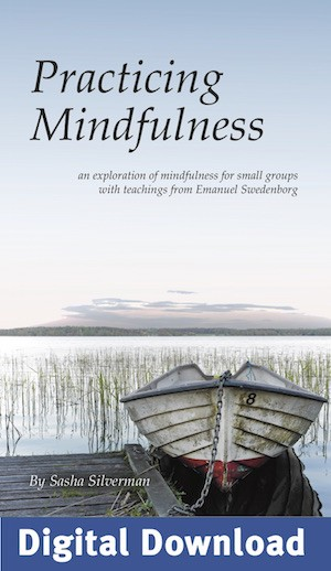 """Practicing Mindfulness"" PDF Download of Workbook"